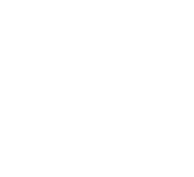 Logo Prodiz Narrowcasting